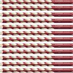 Ergonomischer Buntstift für Rechtshänder – STABILO EASYcolors – 12er Pack – kirschrot